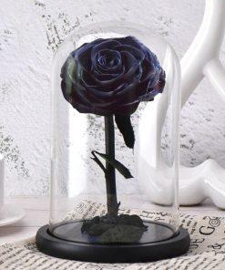 La Belle Et La Bête Rose Éternelle